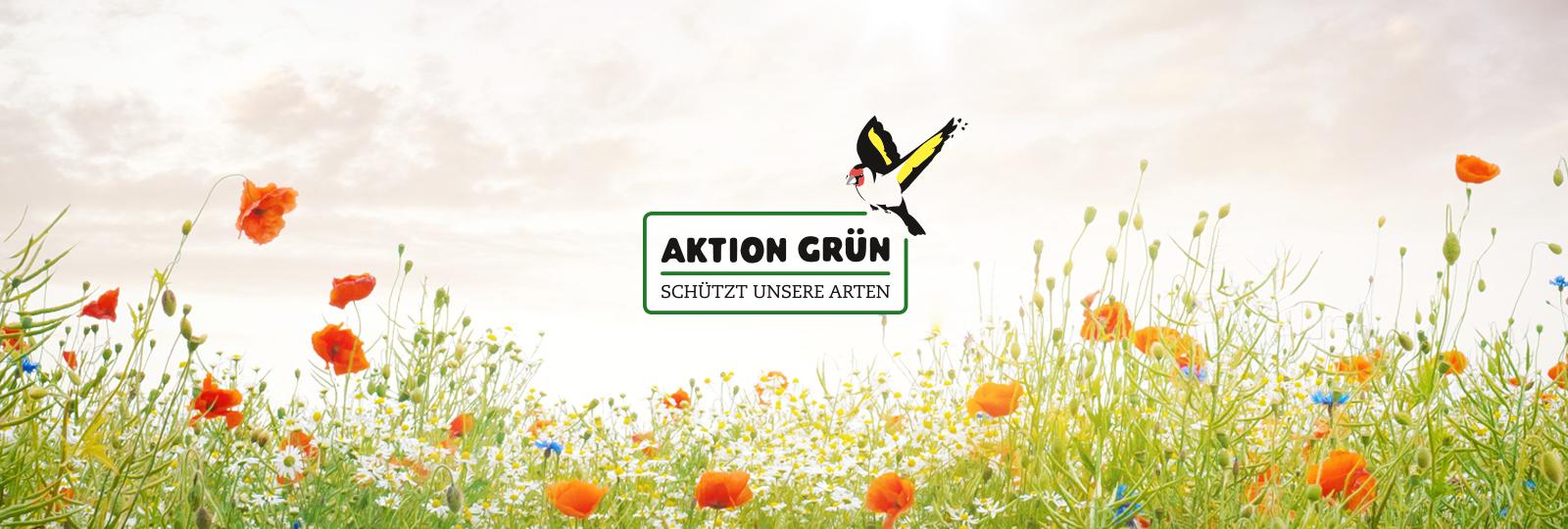 Aktion Grün Logo auf Mohnblumenwiese