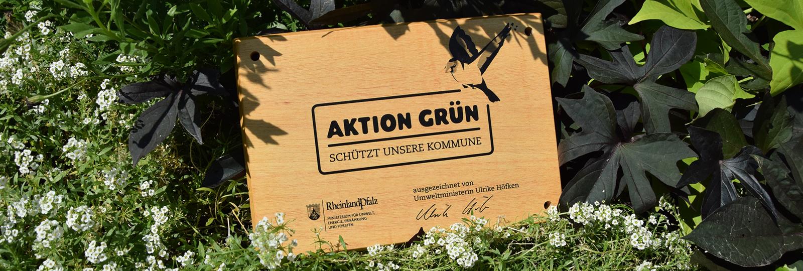 Aktion Grün-Holztafel