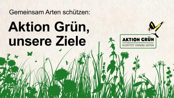 Schaubild Aktion Grün, unsere Ziele