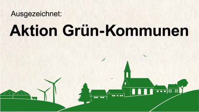 Schaubild Aktion Grün Kommune