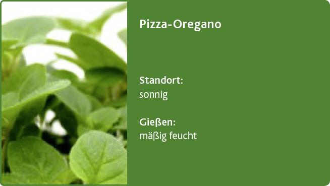 Pizza-Oregano